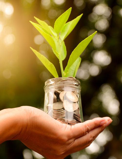 consumptief krediet groeit